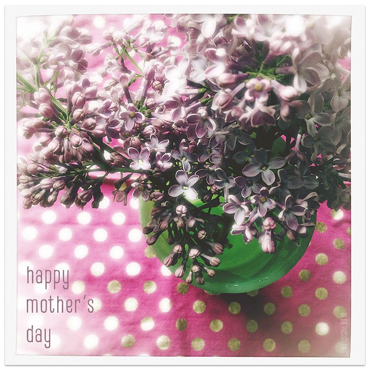 Happy mother 39 s day flowers franklin stone - Unusual mothers day flowers ...
